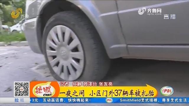 菏泽:一夜之间 小区门外37辆车被扎胎