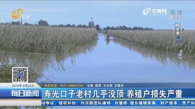 【4G直播】寿光口子老村几乎没顶 养殖户损失严重