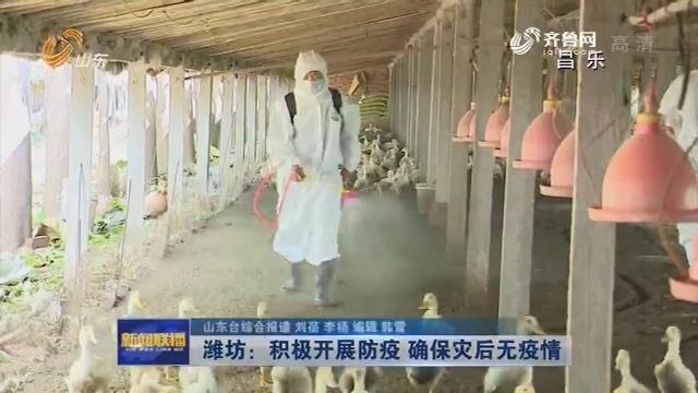 【抢险救灾在行动】潍坊:积极开展防疫 确保灾后无疫情