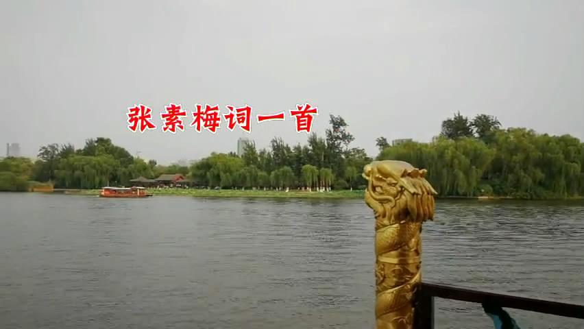 张素梅词一首:《芰荷香  明湖访荷》