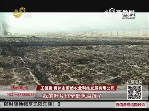 【洪灾救援】青州:企业生产自救 爱心人士伸援手