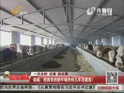 【一次办好】邹城:招商来的奶牛场为何九年没建成?