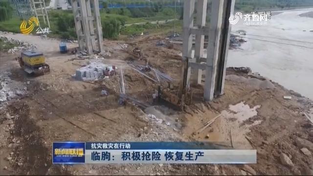 【抗灾救灾在行动】临朐:积极抢险 恢复生产