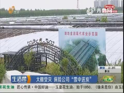 """潍坊:大棚受灾 保险公司""""雪中送炭"""""""