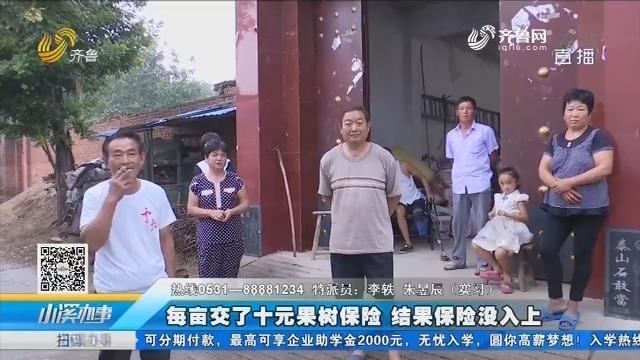 济南:每亩交了十元果树保险 结果保险没入上