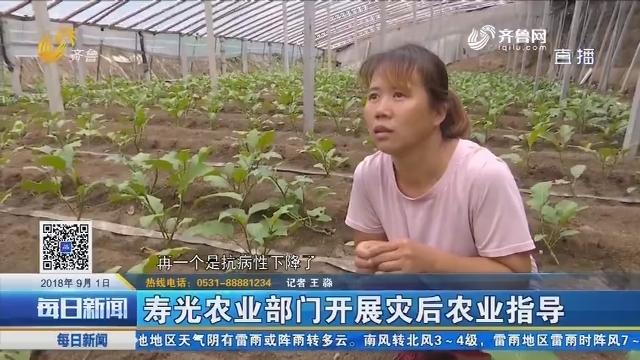 寿光农业部门开展灾后农业指导