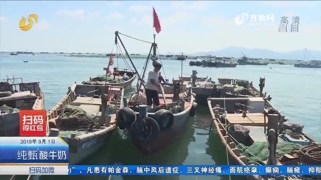 开海第一天:千船竟发场面难现 不少渔民选择晚上出发