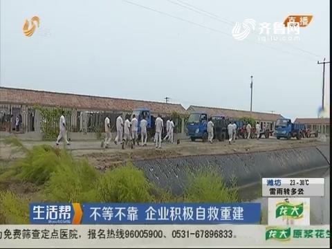 潍坊:不等不靠 企业积极自救重建