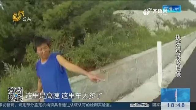 烟台:还有这种操作?一女子在高速公路上遛狗