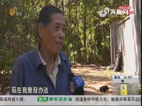 潍坊:伸援手!政府出资 重建家园