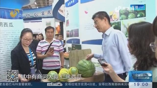 山东30多件地理标志亮相中国国际商标品牌节