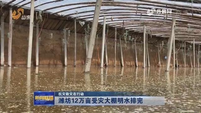 【抗灾救灾在行动】潍坊12万亩受灾大棚明水排完