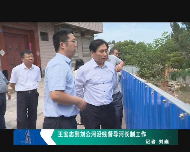 王宏志到刘公河沿线督导河长制工作