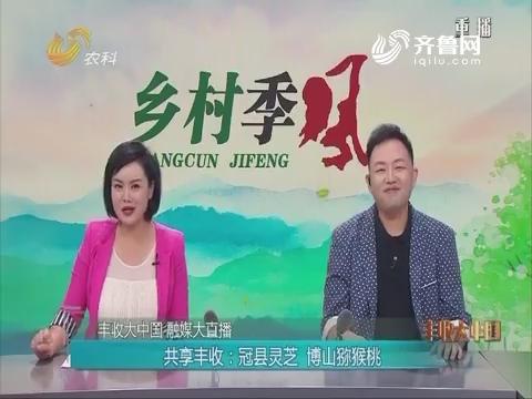 【丰收大中国 融媒大直播】共享丰收:冠县灵芝 博山猕猴桃