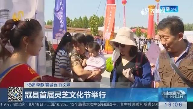 冠县首届灵芝文化节举行
