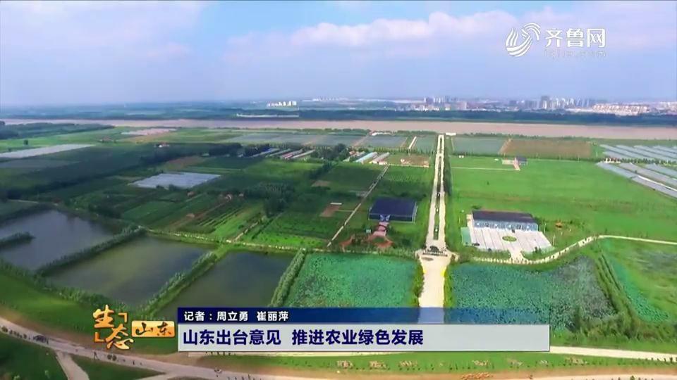 龙都longdu66龙都娱乐出台意见 推进农业绿色发展