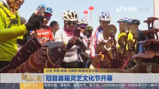 冠县首届灵芝文化节开幕