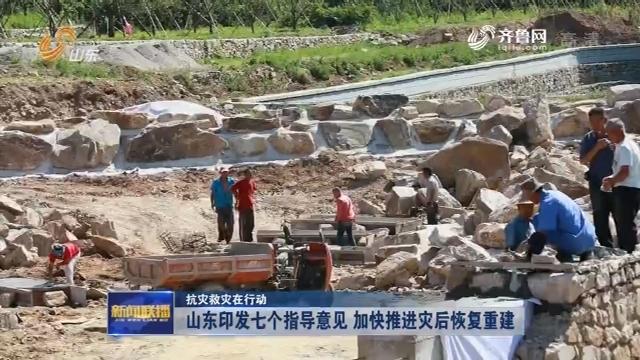 【抗灾救灾在行动】山东印发七个指导意见 加快推进灾后恢复重建