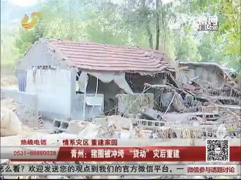 """【情系灾区 重建家园】青州:猪圈被冲垮 """"贷动""""灾后重建"""