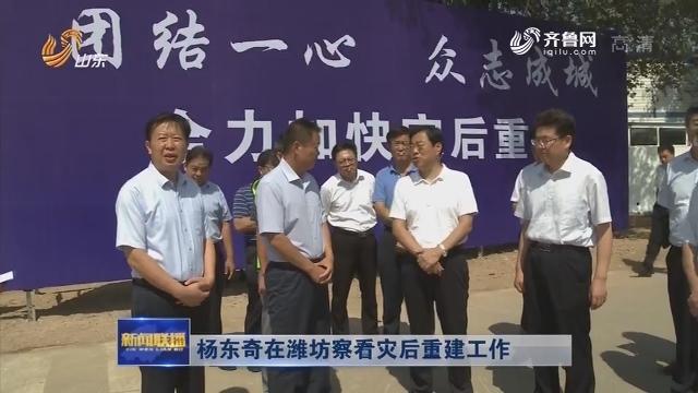 杨东奇在潍坊察看灾后重建工作