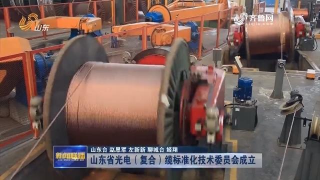 山东省光电(复合)缆标准化技术委员会成立