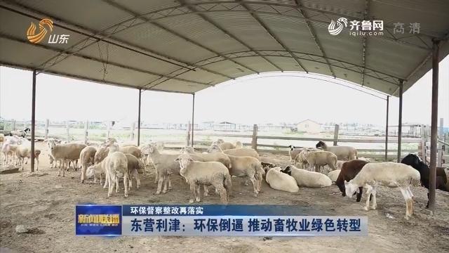 【环保督察整改再落实】东营利津:环保倒逼 推动畜牧业绿色转型