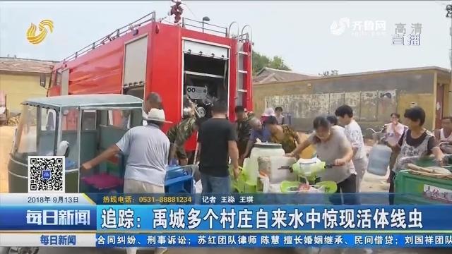 追踪:禹城多个村庄自来水中惊现活体线虫