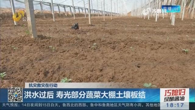 【抗灾救灾在行动】洪水过后 寿光部分蔬菜大棚土壤板结