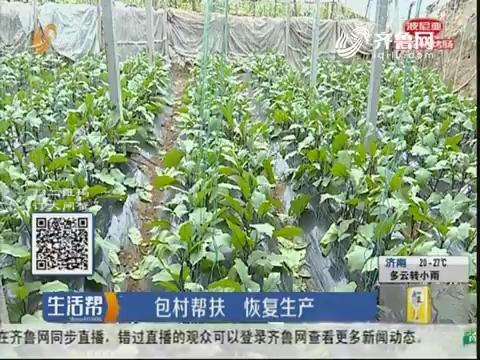 潍坊:包村帮扶 恢复生产