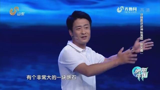 """20180915《美丽中国》:谷晓磊讲述神秘海底""""朋友圈"""""""
