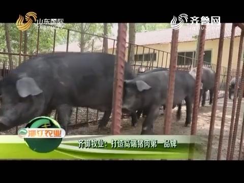 20180915《淄江农业》:齐御牧业——打造高端猪肉第一品牌
