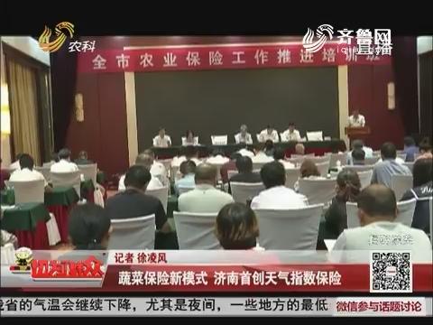 蔬菜保险新模式 济南首创天气指数保险