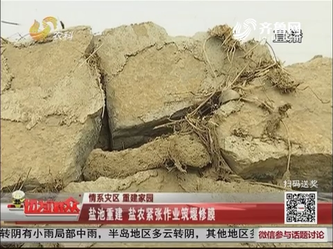 【情系灾区 重建家园】寿光:盐池重建 盐农紧张作业筑堰修膜