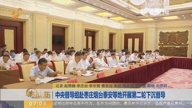 中央督导组赴枣庄烟台泰安等地开展第二轮下沉督导