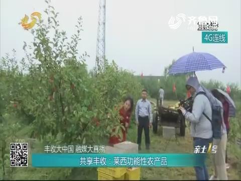 【丰收大中国 融媒大直播】共享丰收:莱西功能性农产品