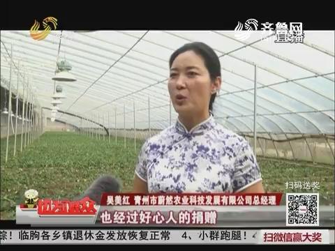 【情系灾区 重建家园】青州:农企积极重建 补种新苗提档升级