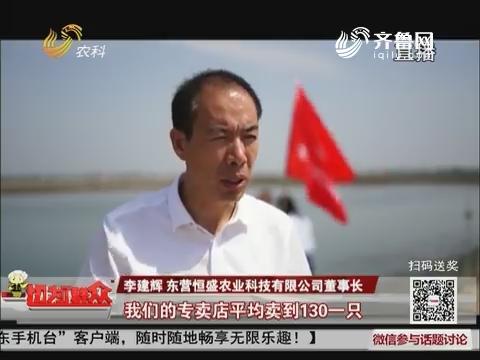 【丰收大中国】黄河口大闸蟹开捕上市啦