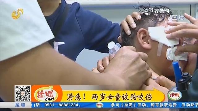 滨州:紧急!两岁女童被狗咬伤
