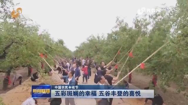 【中国农民丰收节】五彩斑斓的幸福 五谷丰登的喜悦