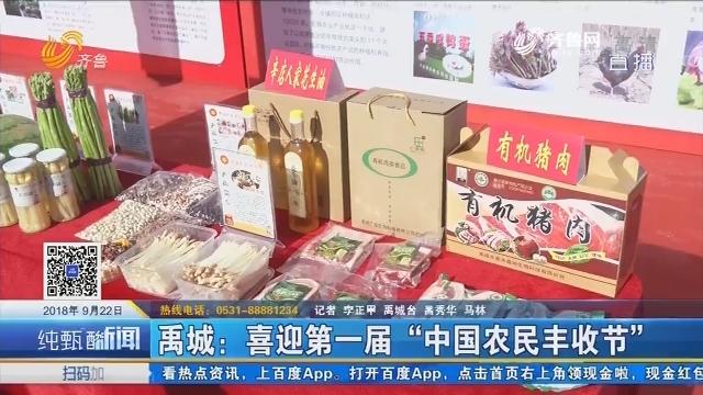 """禹城:喜迎第一届""""中国农民丰收节"""""""