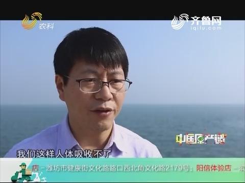 20180922《中国原产递》:海参肽