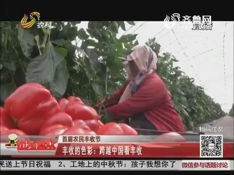 【首届农民丰收节】丰收的色彩:跨越中国看丰收