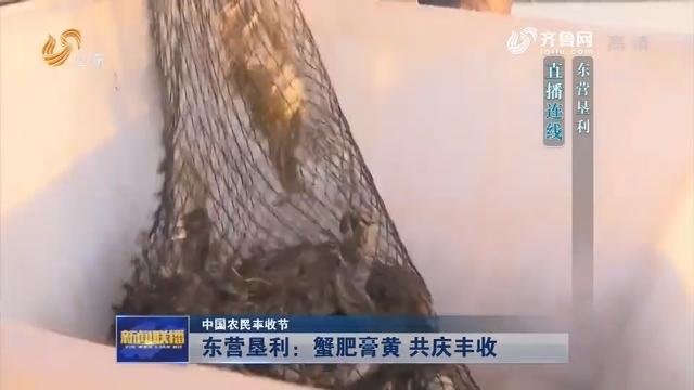 【中国农民丰收节】东营垦利:蟹肥膏黄 共庆丰收