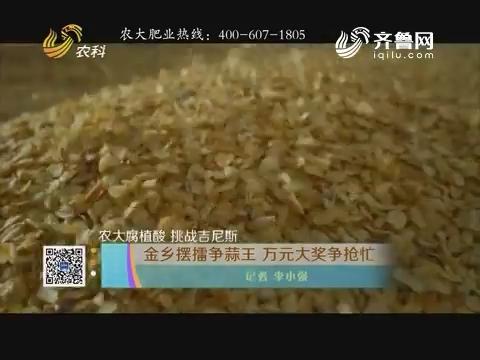 【农大腐植酸 挑战吉尼斯】金乡摆擂争蒜王 万元大奖争抢忙