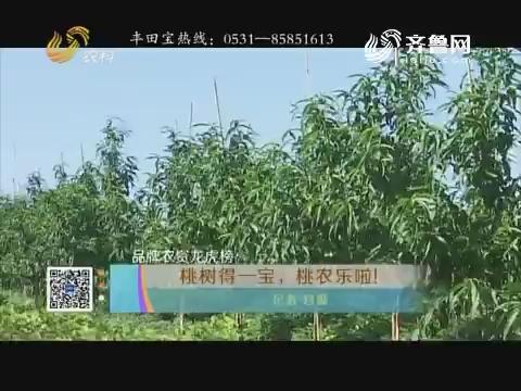 【品牌农资龙虎榜】桃树得一宝,桃农乐啦!