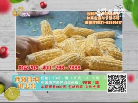 20180925《中国原产递》:西双版纳小玉米