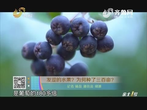 发涩的水果?为何种了三百亩?