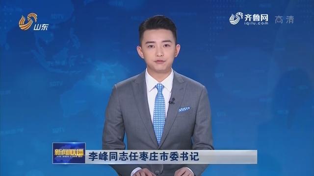 李峰同志任枣庄市委书记