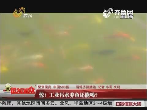 【聚焦儒商 中国500强——淄博齐翔腾达】惊!工业污水养鱼还能喝?