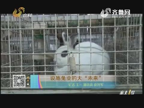 """设施兔业的大""""未来"""""""